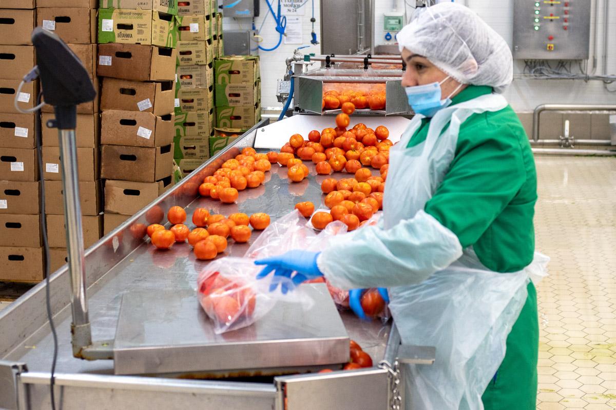 На производстве салатов «Белая Дача» © Техномод