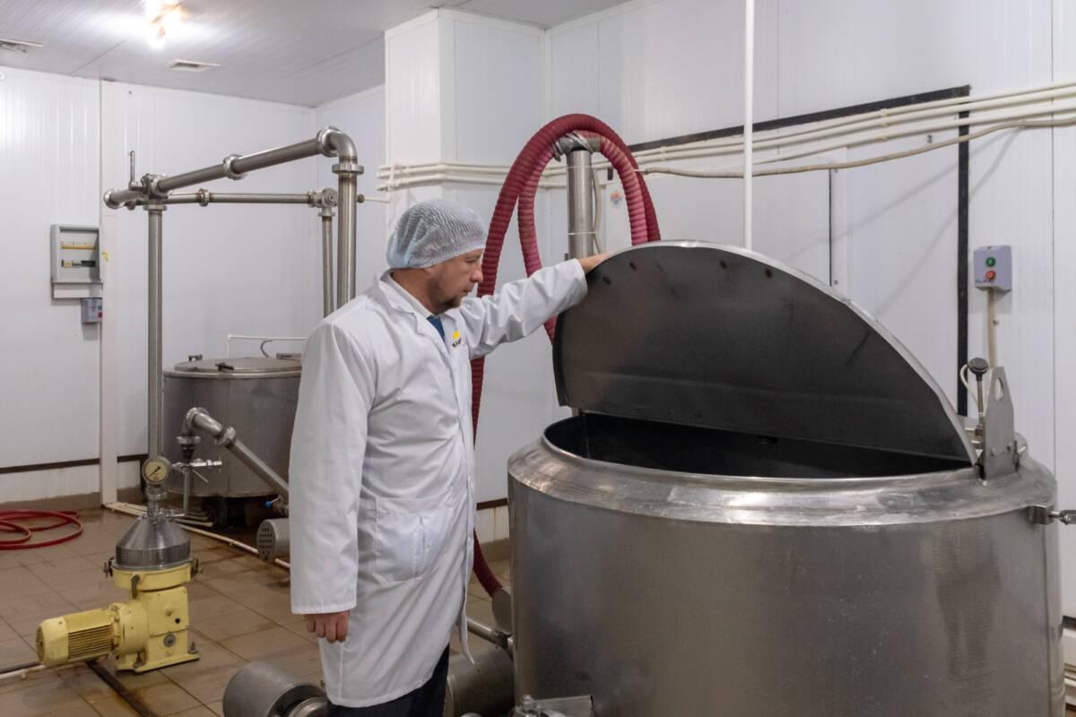 Как производятсыры камамбер и бри в России. Фотоэкскурсия на завод в Татарстане © Техномод