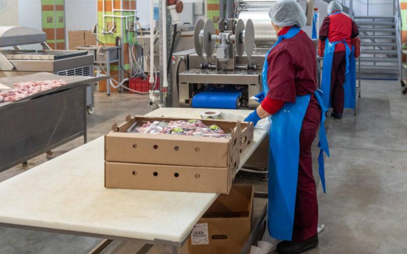 Как производят продукты из утиного мяса. Экскурсия на фабрику в Татарстане © Техномод