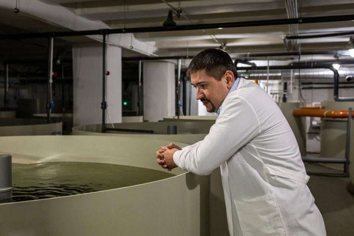 Как в Казани производят чёрную икру. Экскурсия на предприятие «Дары Волги» © Техномод