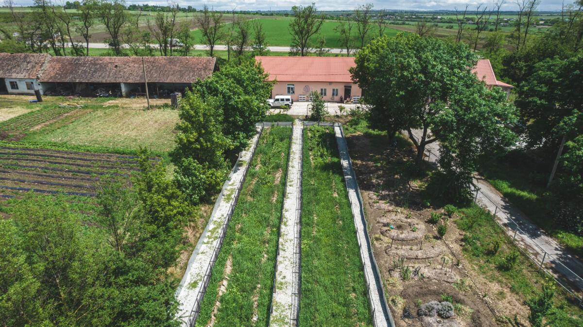 Улиточная ферма «Улиточка» в посёлке Уташ © Техномод