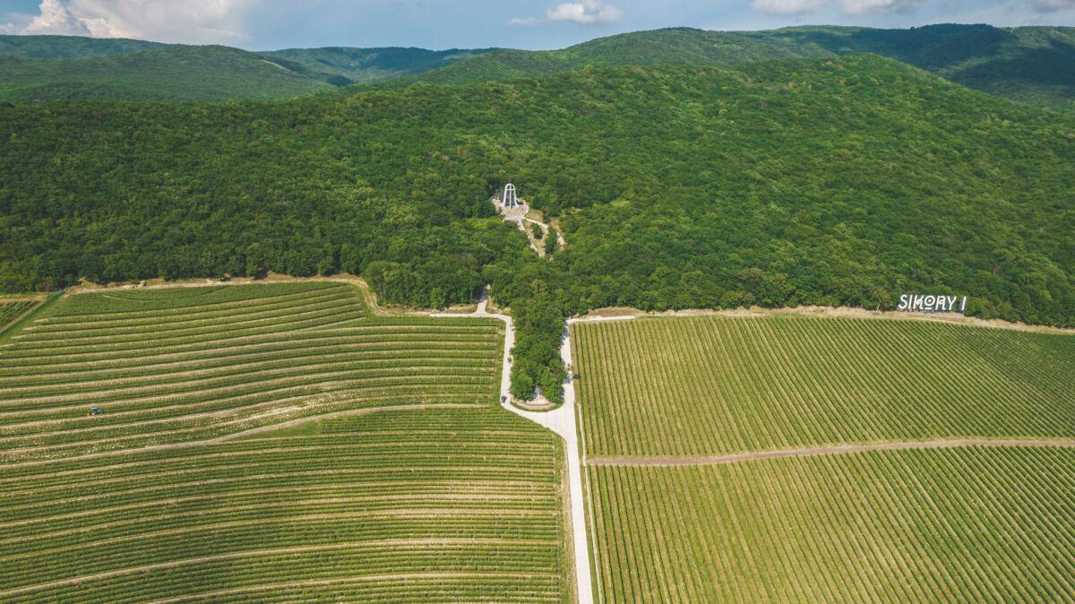 Семейная винодельня «Винотеррия» граничит с серьезными и крупными производителями вина © Техномод